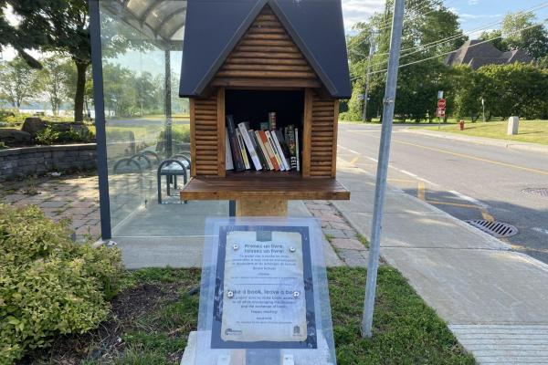 Book-Sharing boxes are back in WI