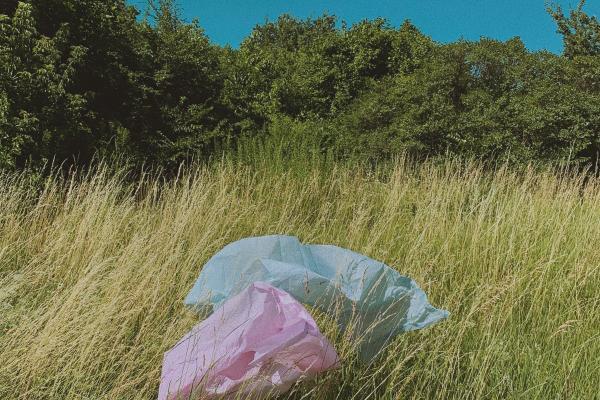 Plastic bags begone!