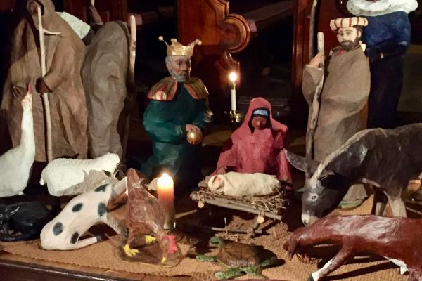 There's a new critter in the crèche at the Cathedral