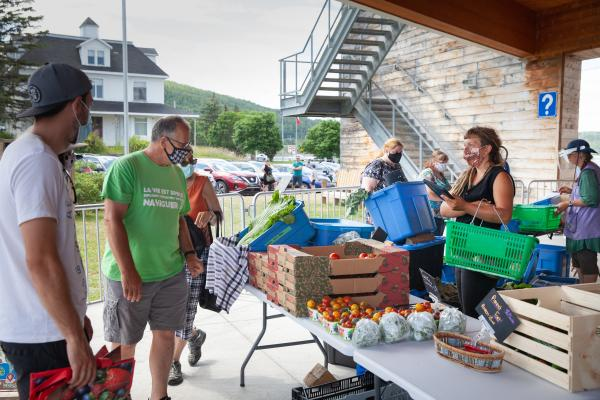 Despite challenges Gaspé's first public market of the season went well
