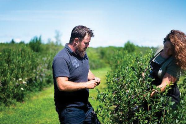 Organic blueberry farm highlights its own ecosystem
