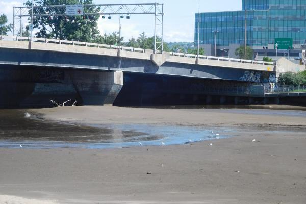 St. Charles River runs dry to flush toxins
