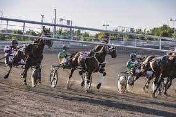 Quebec horses still racing despite track woes elsewhere