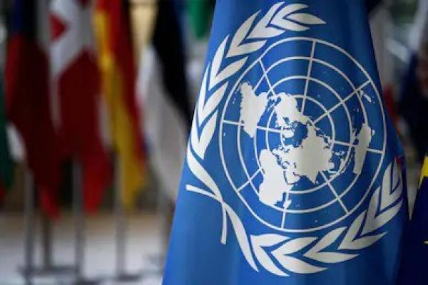 The United Nations—friend or foe?